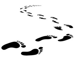 Avoid the footprint